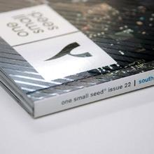 Editor of one small seed magazine (South Africa) from 2010 to 2011