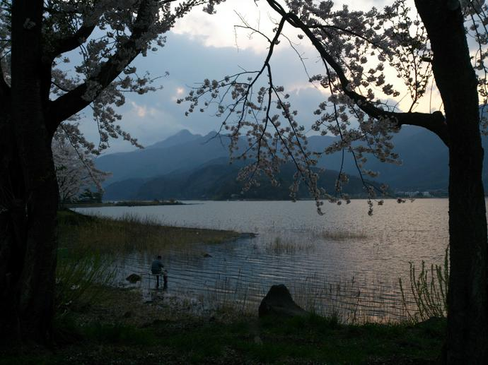 Lake Kawaguchiko is a very popular recreational fishing place.