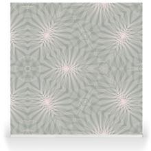 Cosmos - Floral
