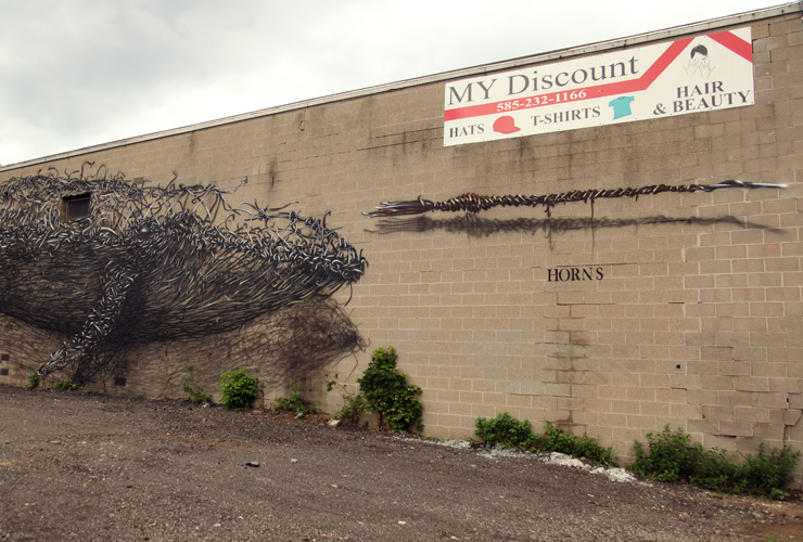 'Discount Evolution' Rochester-USA
