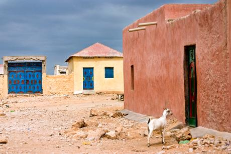 thumbnail for The Visitor, Bosaso, Somalia
