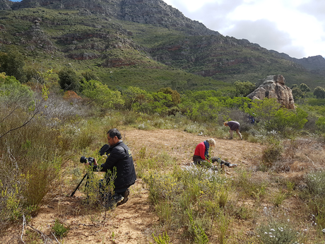 Land artists working at the foot of the Kasteelberg