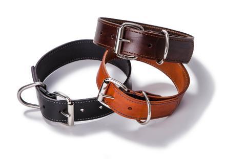Big dog collar