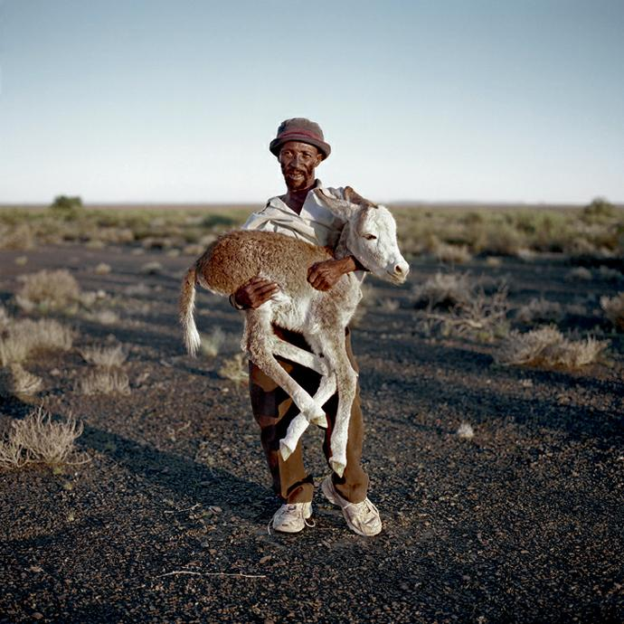 David Tieties with his three-day-old donkey. Verneukpan, Northern Cape,6 April 2009