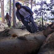 mountainanimimals_0-01-05-07.jpg
