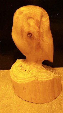 Melbourne guild of fine woodworking classes owl carving course