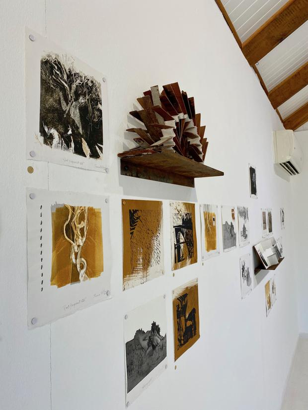 Installation view of _Uproot_, February 2020