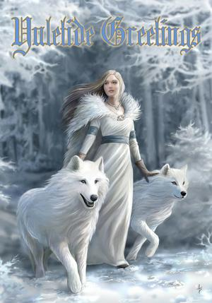 AN48 Winter Guardians