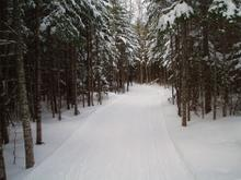 groooooooomed trails.