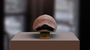 Thumbnail for KVR Tortoise Lamp