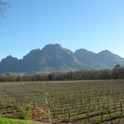 Simonsberg ,Named after Governor Simon vd Stel.Founder of Stellenbosch,1679.