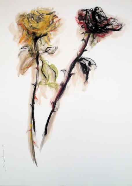 Yellow rose black rose