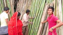 Thumbnail for Bamboo Windchimes