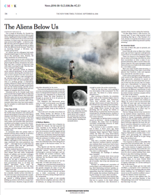 Thumbnail for New York Times