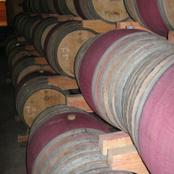 Barrels and barrels of wine!