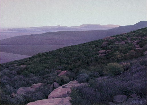 Karoo at dusk - SOLD
