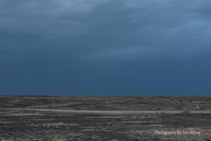 Tankwa Karoo Landscape [59001]