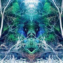 Thumbnail for Portals