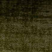 Chameleon col. 506