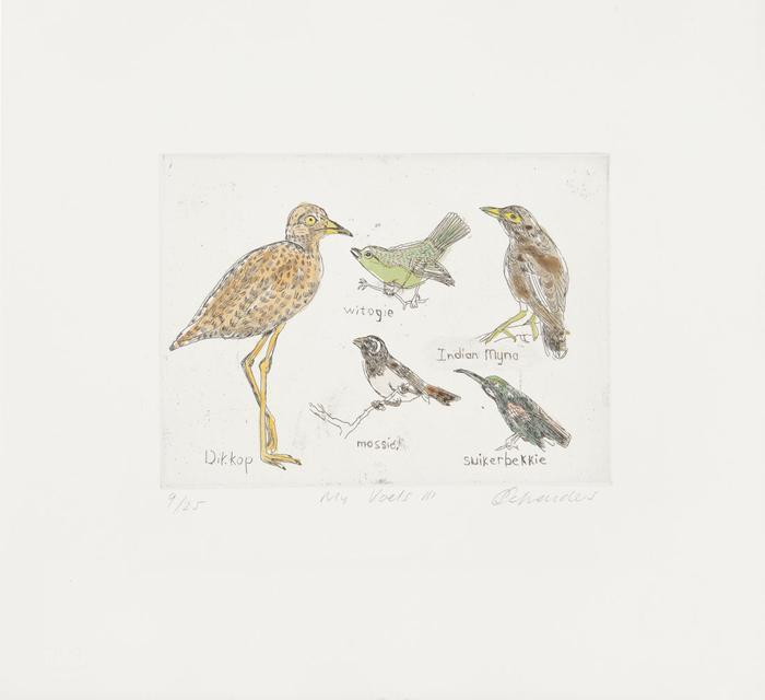 My Voëls III (My Birds III)