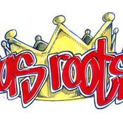 ras_roots.jpg