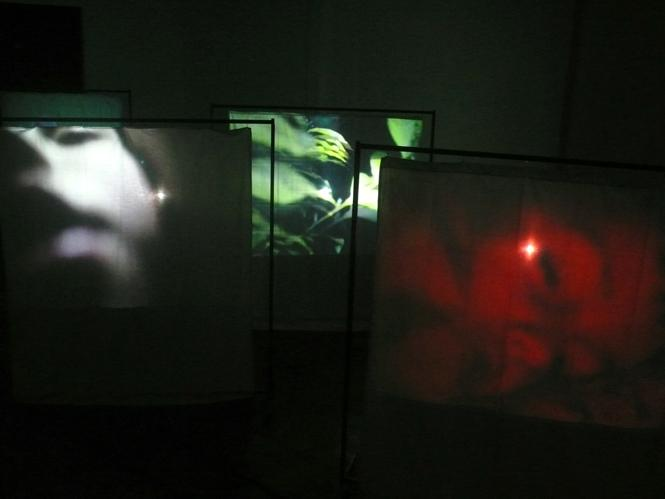 thumbnail for Installation view