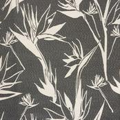 Strelitzia - Reverse Black