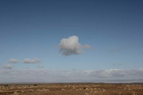 Cloud. Karoo [42105]
