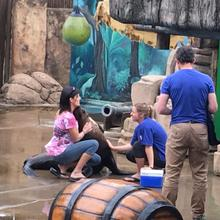 Hayley McLellan engages with a seal at her old workplace uShaka Marine World in Durban