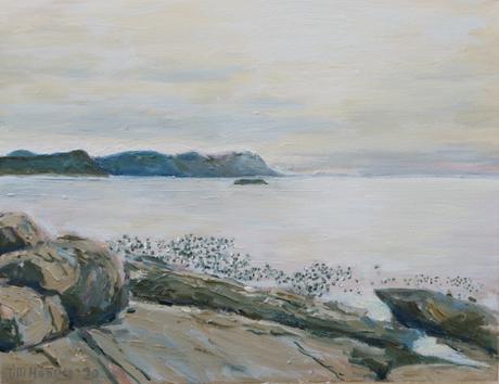 False Bay from Boulders Beach / 2020 / 36cm x 46cm / Oil on Canvas