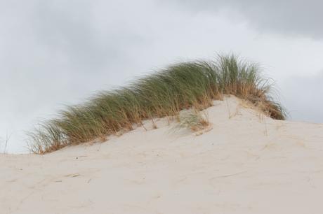 Peers Hill Dune [01004]