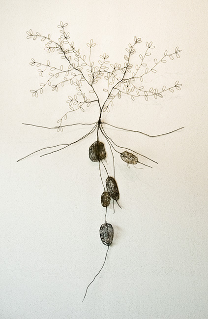 Plant with roots and tubers - SOLD