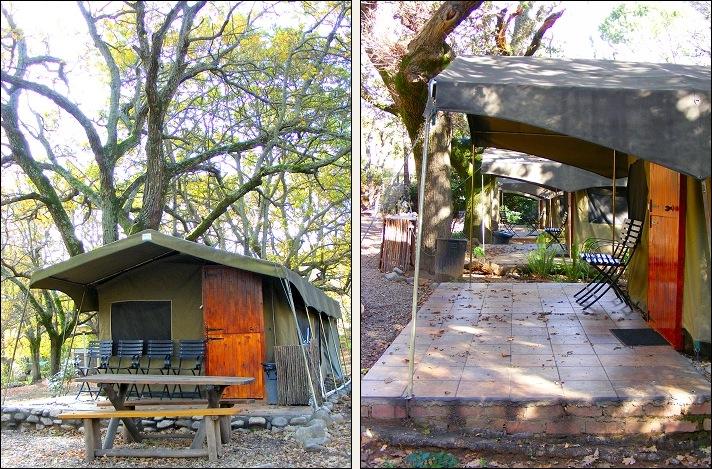 safari-tent-camping-slanghoek-western-cape.jpg