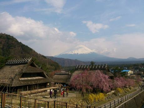 Mount Fuji from Nenba Village