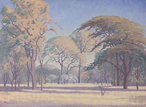 JH Pierneef: Bosveld, N. Transvaal