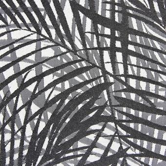 jungle_black-white_1003-001.jpg