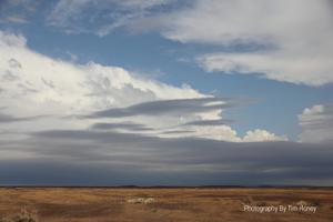 Karoo Landscape [30052]