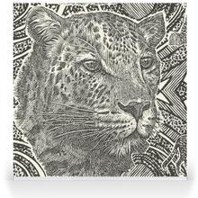 Money Leopards Charcoal