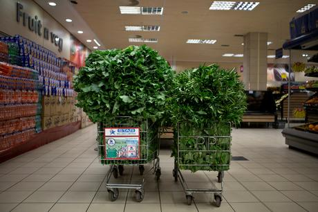 thumbnail for Trolleys of greens- Pick N Pay, Levy Shopping Mall, Lusaka, Zambia
