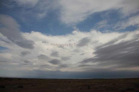 Karoo Landscape IV [14055]