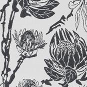 Protea - Black