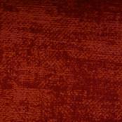 Chameleon col. 302