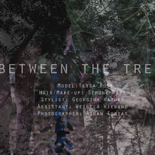 Thumbnail for Between the trees
