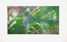 thumbnail for Green Beres