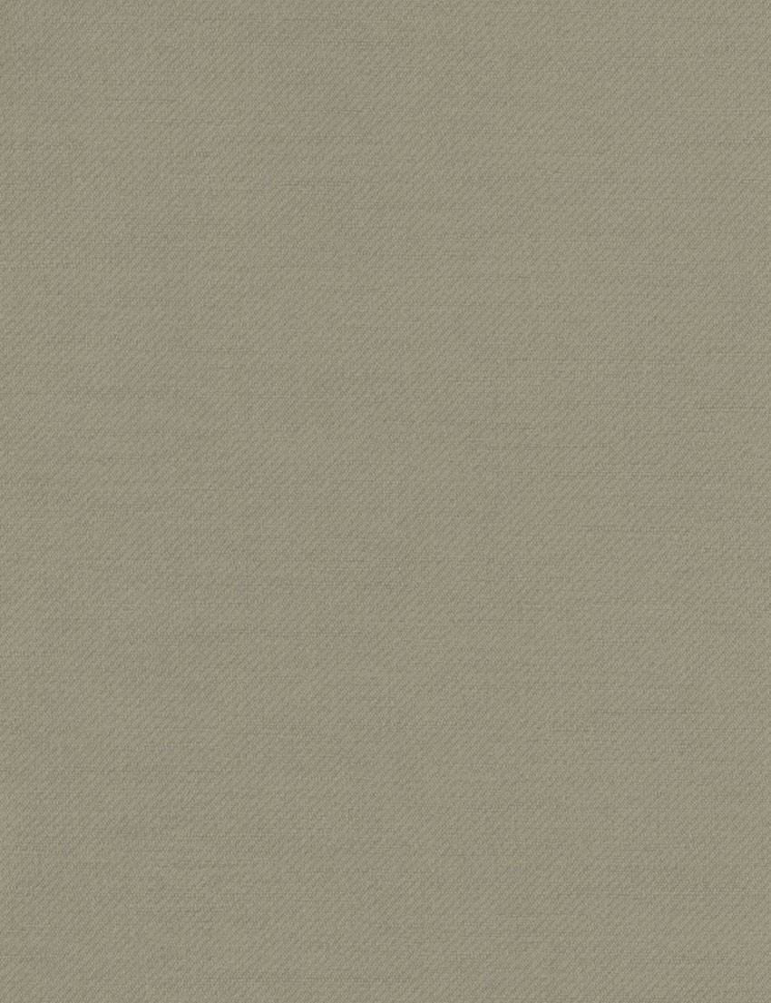 Blazer colour taupe halogen international for Colour taupe pictures