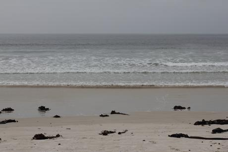 Fish Hoek Beach [13003]