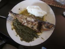 Fish at La Casa Troplicale