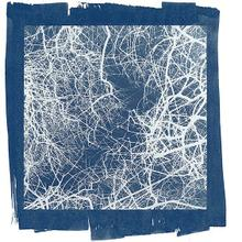 thumbnail for Cyanotype