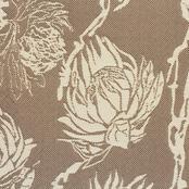 Protea - Sand