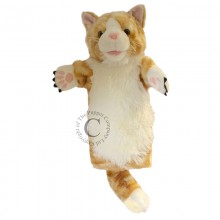 Long Sleeved Cat Ginger PC 6014